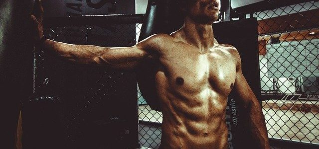 Muscle Building Tips That Will Work For You